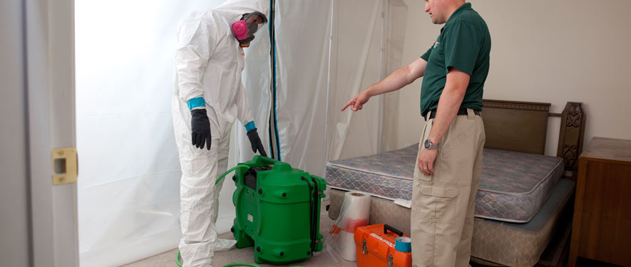 Marlboro, NJ mold removal process